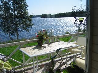 Nice 3 bedroom House in Petrozavodsk - Petrozavodsk vacation rentals