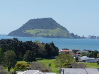 Perfect Studio with Internet Access and Water Views - Tauranga vacation rentals