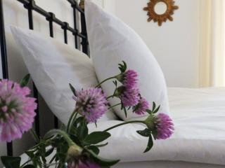 Cosy flat w private garden - Antibes Juan les Pins - Juan-les-Pins vacation rentals