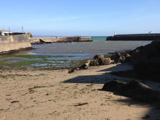 In the very heart of Mevagissey by the harbour. - Mevagissey vacation rentals