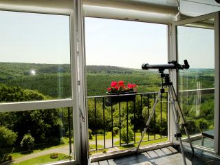 Romantic 1 bedroom Apartment in Nassogne - Nassogne vacation rentals
