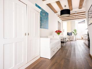 Guesthouse Amsterdam - Amsterdam vacation rentals