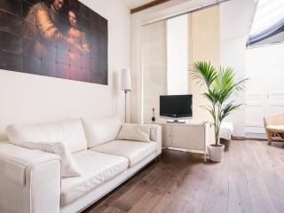 Comfortable 1 bedroom Condo in Amsterdam with Internet Access - Amsterdam vacation rentals