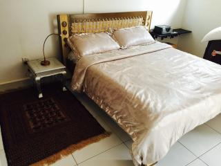 2 bedroom Apartment with Internet Access in Kampala - Kampala vacation rentals