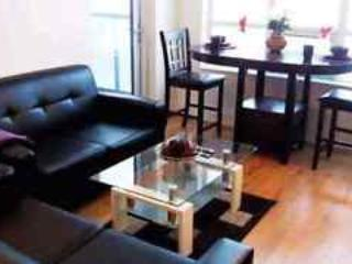 2 bed 2 bath beautifully furnished condo - Mississauga vacation rentals