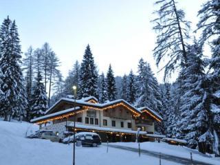 Nice Condo with Television and Mountain Views - Folgarida vacation rentals