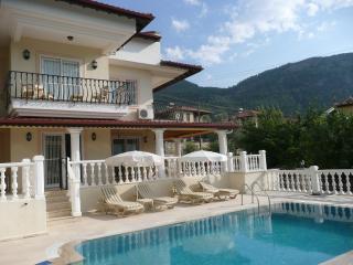 Perfect 3 bedroom Villa in Yesiluzumlu with Internet Access - Yesiluzumlu vacation rentals