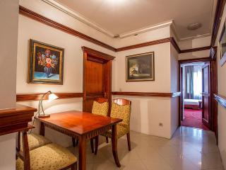 Luxury Belgrade Apartments - Istanbul - Belgrade vacation rentals