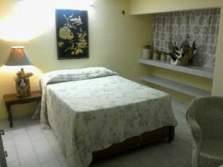 Nice Condo with Internet Access and A/C - Chetumal vacation rentals