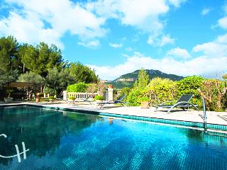 Gorgeous villa in the mountains - Es Capdella vacation rentals