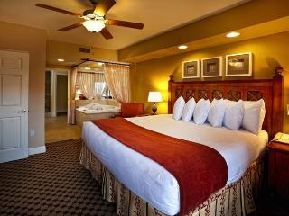 Vacation Rental in the Heart of Orlando, Florida! - Orlando vacation rentals