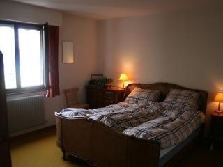 appartement luxueux sur le piste - Torgon vacation rentals
