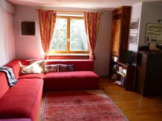 Splendido e soleggiato alloggio - Antagnod vacation rentals