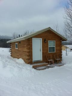 Cozy cabin with Grand views - Victor vacation rentals