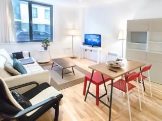Stunning 3 Bed Apartment In Kings Cross | #BH6678 - London vacation rentals