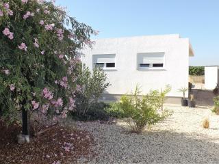 Charming 2 bedroom Villa in Jacarilla with Internet Access - Jacarilla vacation rentals