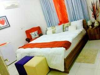 Presidential luxurious suite in the heart of tema - Tema vacation rentals