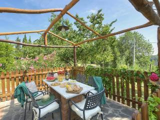 Nice House with Deck and Internet Access - Montelopio vacation rentals