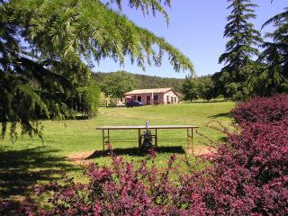 Agriturismo - Casa San Lorenzo - - Bolsena vacation rentals