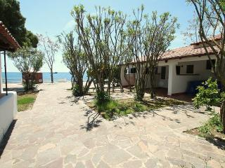 Beautiful 1 bedroom House in Agnone Cilento - Agnone Cilento vacation rentals