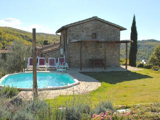 Charming 2 bedroom House in Greve in Chianti - Greve in Chianti vacation rentals