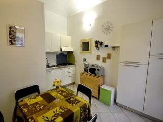 1 bedroom House with Television in Torino - Torino vacation rentals