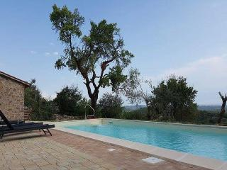 Charming Villa with Deck and Dishwasher - Montegiove vacation rentals