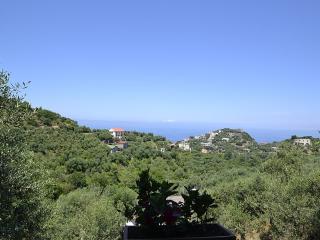 Nice 3 bedroom Villa in Schiazzano - Schiazzano vacation rentals