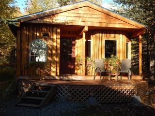 Talkeetna Basecamp wilderness cabin accessible by car - Talkeetna vacation rentals