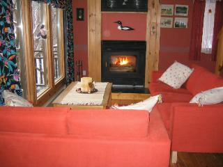 Bright 4 bedroom Cottage in Bracebridge - Bracebridge vacation rentals
