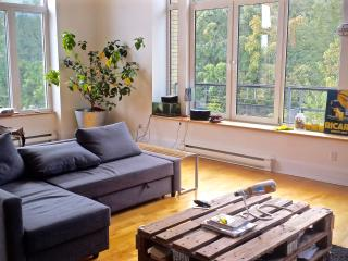 Amazing loft in front of Parc Laurier - Montreal vacation rentals