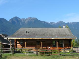 Log Cabin-Olympic Peninsula, Olympic Mt. Views - Port Angeles vacation rentals