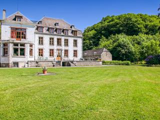 Beautiful 15 bedroom House in Vireux-Wallerand with Waterfront - Vireux-Wallerand vacation rentals
