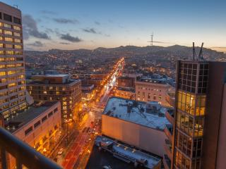 Downtown 1BR w/ Amazing Views!!! - San Francisco vacation rentals