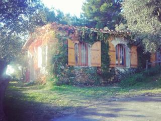 Cozy 3 bedroom Cottage in Vieste - Vieste vacation rentals