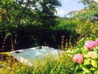 Villa il Canto e Residenza la Fonte - San Godenzo vacation rentals