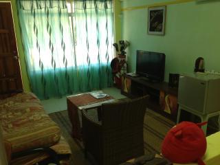 Spacious Family Room Fully Furnish - Kuala Teriang vacation rentals