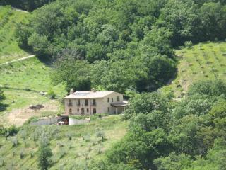 Bio Fattoria Località il Piano Apartment I Fichi - Vallo di Nera vacation rentals