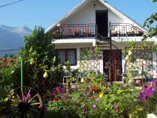Beautiful Villa with Satellite Or Cable TV and Parking - Bitola vacation rentals