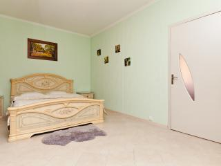 Cozy 1-room apartment in the center - Chisinau vacation rentals