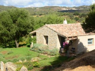 A typical Sardinian Stazzu cottage in Gallura - Luogosanto vacation rentals