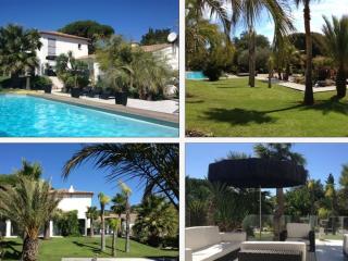 Contemporary villa Heaven with exotic garden&pool - Grimaud vacation rentals