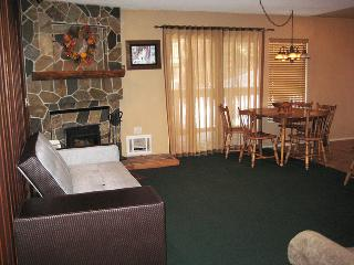 Nice Apartment with Internet Access and DVD Player - Mammoth Lakes vacation rentals