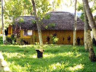 Kerala Music Dance Soirée and Varkala Bamboo - Varkala vacation rentals