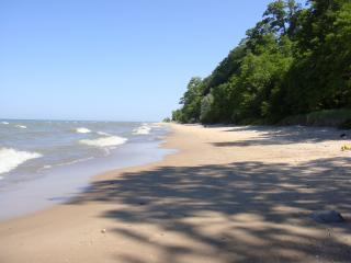 Four Bedroom,Private Lake Michigan Beach Access - Glenn vacation rentals
