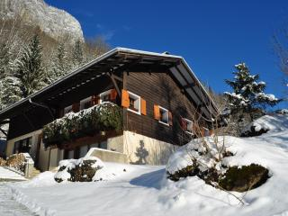 Perfect Chalet with Internet Access and Dishwasher - Sixt-Fer-a-Cheval vacation rentals
