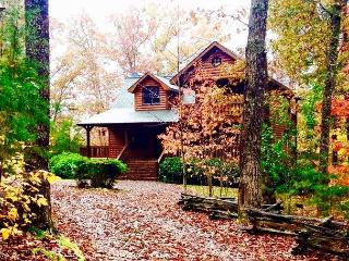 Nice Cabin with Internet Access and Dishwasher in Morganton - Morganton vacation rentals