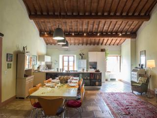 Podere Rosignano B 'n B cosy and bright - Radicondoli vacation rentals