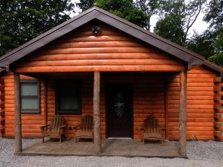 Vacation Rental in Finger Lakes