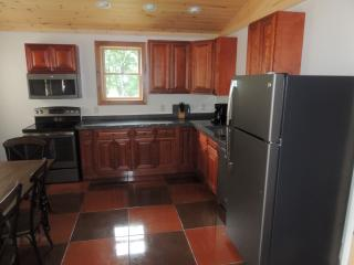 Cayuga Lake Cabin, Cayuga Wine Trail, Finger Lakes - Cayuga Lake vacation rentals